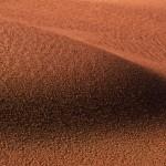 041-AFRICA-NAMIBIA-NAMIB.DESERT-TOK.TOKKIE